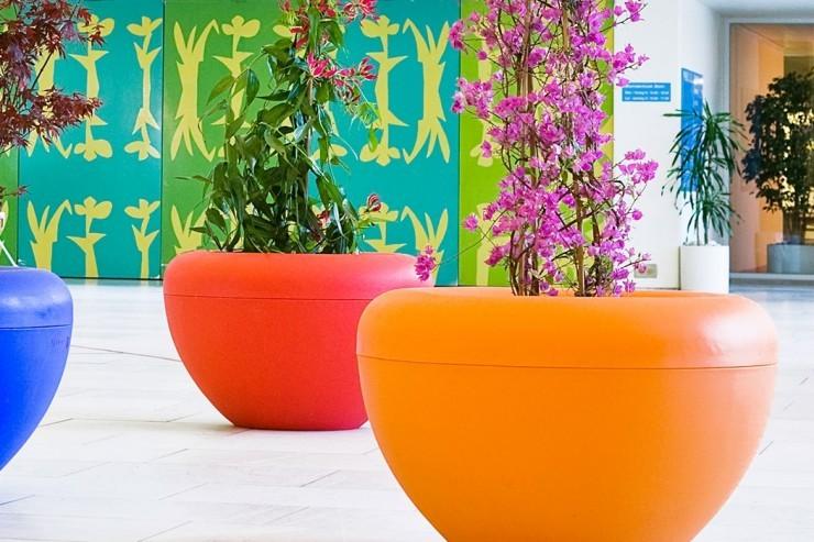 Scoop plantenbak voor een kleurrijke en vrolijke binnenruimte