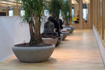 Plantenbak supercell perfect voor binnenruimte