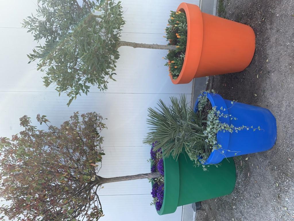 Alvium plantenbakken van polyethyleen - 9 frisse kleuren