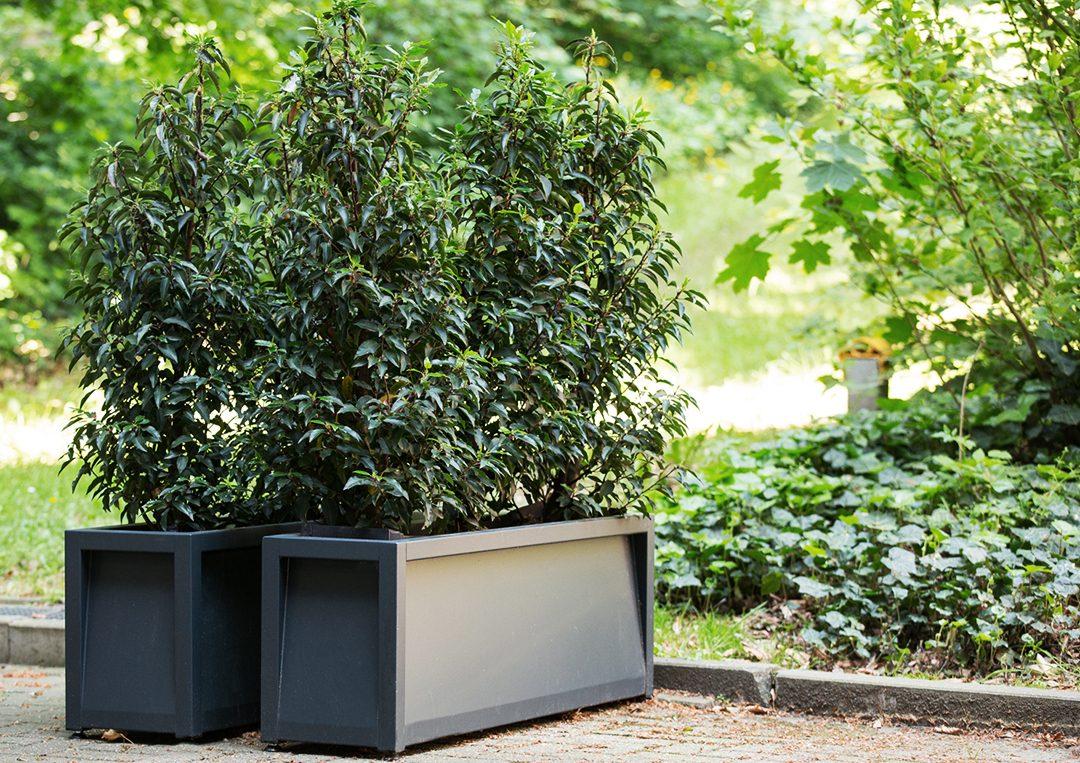 Frame plantenbak geschikt voor binnen en buiten