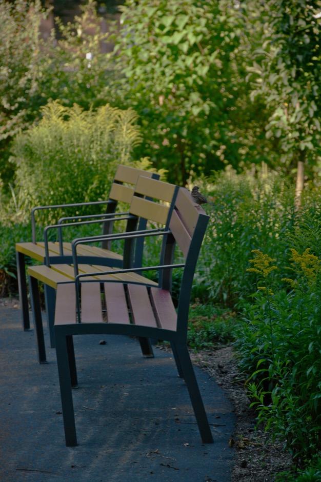 La Strada stoel - gekenmerkt door een eenvoudig en tijdloos design