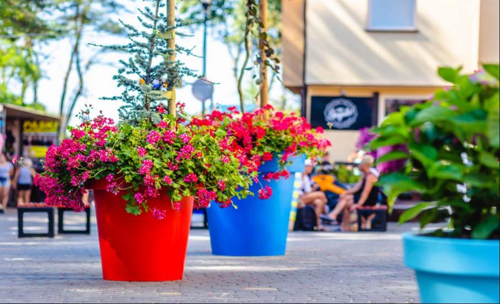 Gianto Classic Plantenbak voor een vrolijke leefomgeving
